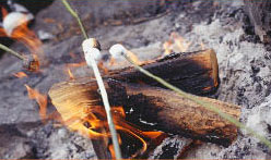 camping food of marshmallows over campfire