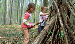 kids building wooden shelter in woods